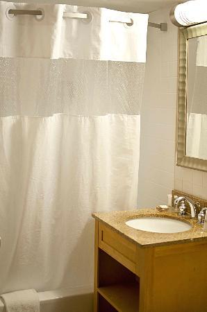 Howard Johnson Inn Downtown Chicago: bagno
