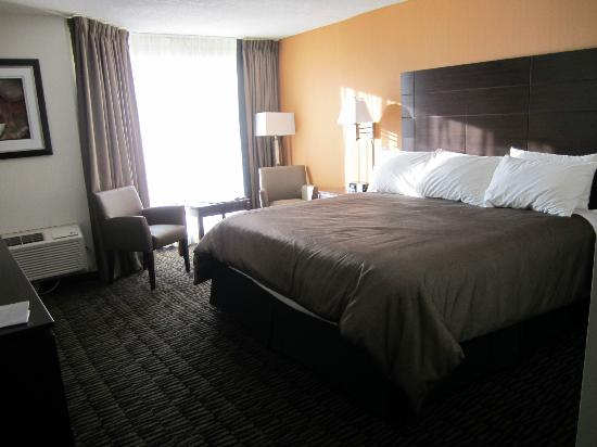 Ramada Plaza Niagara Falls: king bed