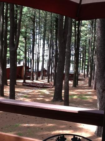 Island Pointe Resort: view from our deck in cabin 14