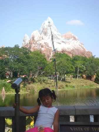 adelante de monte everest picture of disney's animal
