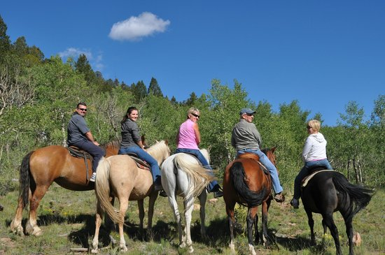 American Safari Ranch: horseback riding