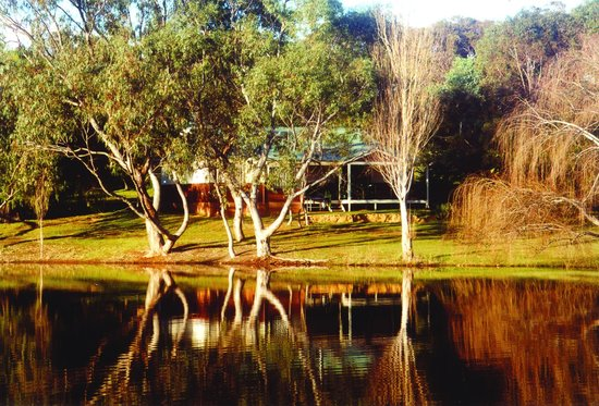 Photo of Bushy Lake Chalets Margaret River