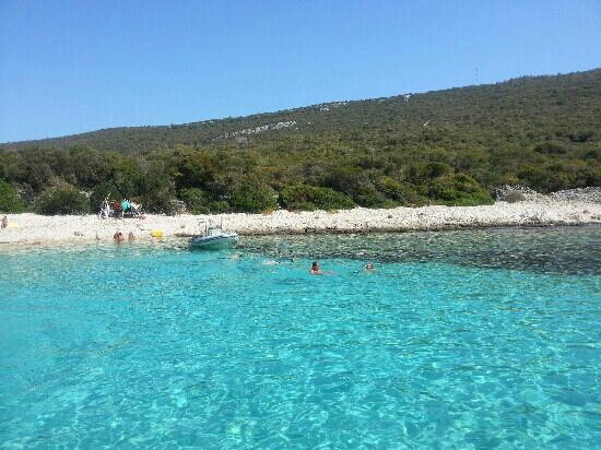 baia in lussino - Picture of Cikat Forest Park, Mali Losinj ...