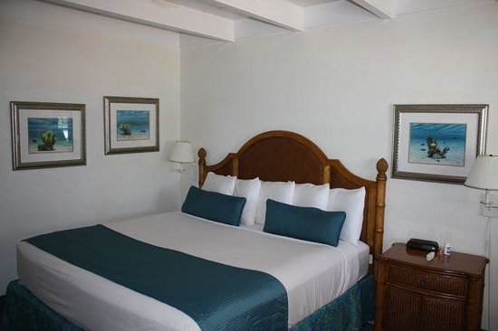 Beach Shell Inn: As you can see, an older room - but well maintained with a flat panel and larger fridge.