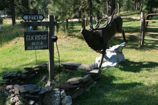 Elk Ridge Bed & Breakfast: At the front of the drive
