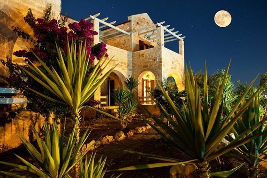 St. George's Retreat Village: Villa Thalia under the moonlight