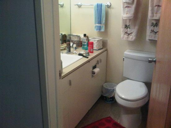 Ann Arbor Bed & Breakfast: bathroom