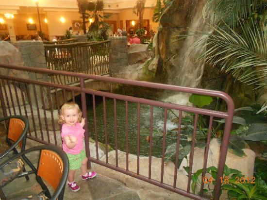Embassy Suites Anaheim - South: Beautiful atrium!