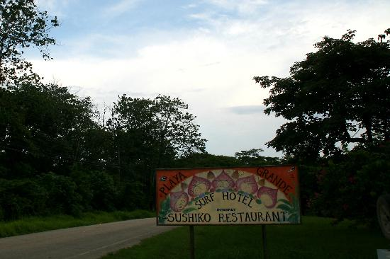 Playa Grande Park Hotel: Sign by the hotel