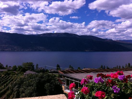 Okanagan Valley, Canada: View from the outside deck