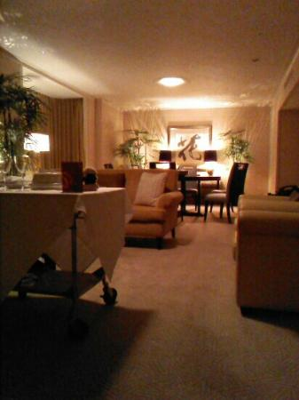 Sheraton Miyako Hotel Tokyo: Imperial Palace suite, 1254. Top floor, very quiet, private living room
