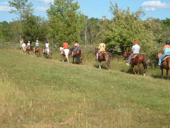 Honora Bay Riding Stables