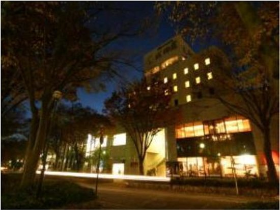 Suwa City Hotel Naritaya: 