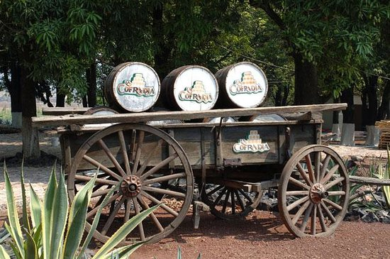Tequila Adventure Tours