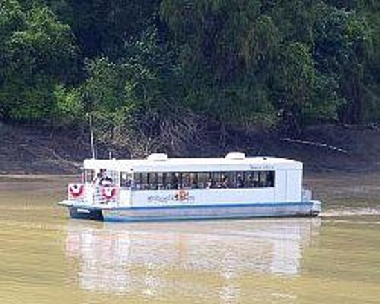 Mississippi River Tours