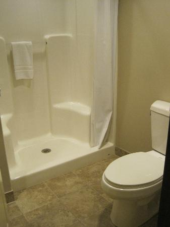 Chautauqua Suites, Meeting & Expo Center: One of Two Bathrooms in Room