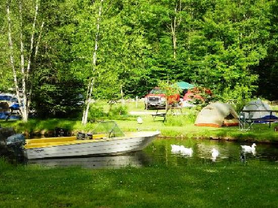 Country Bumpkins Campground and Cabins