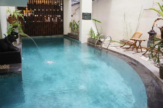 Jocs Boutique Hotel & Spa: The pool within the hotel