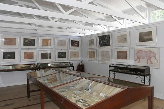 Old Library Museum