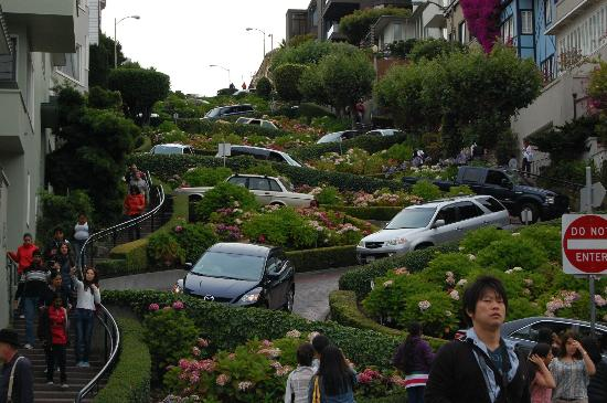Photos of Lombard Street, San Francisco