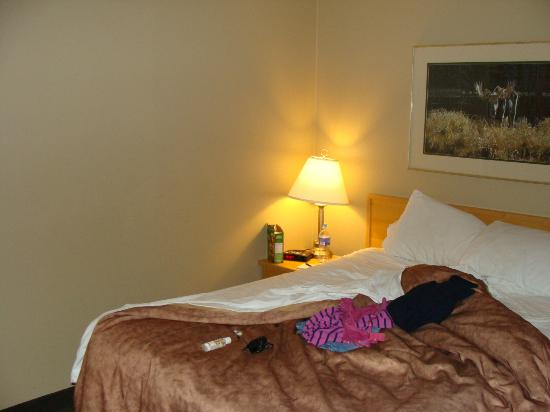 Tunnel Mountain Resort: Bed room