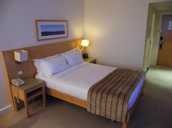 Hilton Dublin Airport: One room...