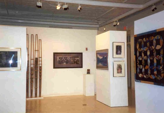 Firelands Association for the Visual Arts