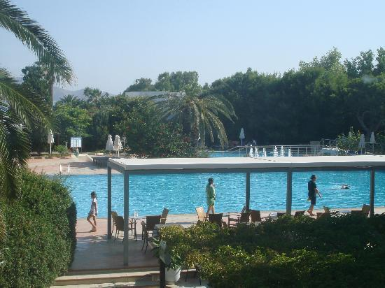 Caravia Beach: Part of the Pool area