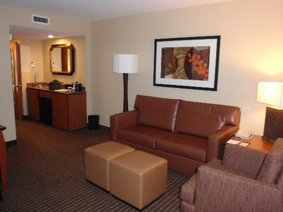 Embassy Suites Anaheim - South: Living area