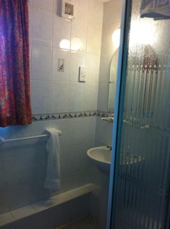 The Hanmer Arms: Great power shower