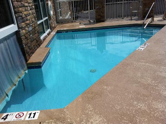 Holiday Inn Hotel &amp; Suites Asheville Downtown: Pool