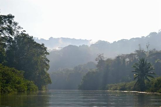Saladero Eco Lodge: Rio Esquinas mist in the early morning