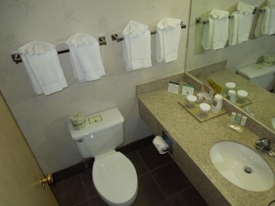 Quality Inn &amp; Suites Conference Center: Bath