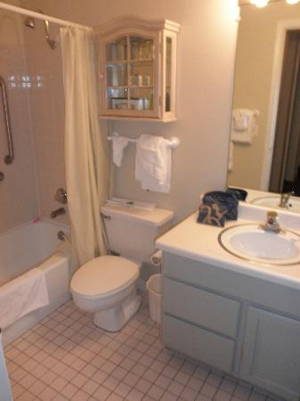 Park Regency Hotel: Master Bathroom