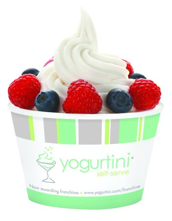 yogurtini self serve frozen yogurt springfield