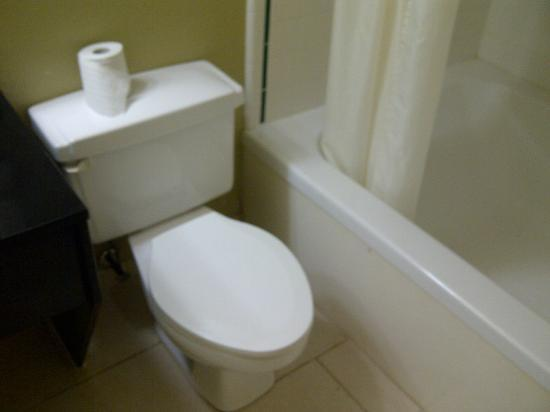 BEST WESTERN Leisure Inn: No toilet paper holder