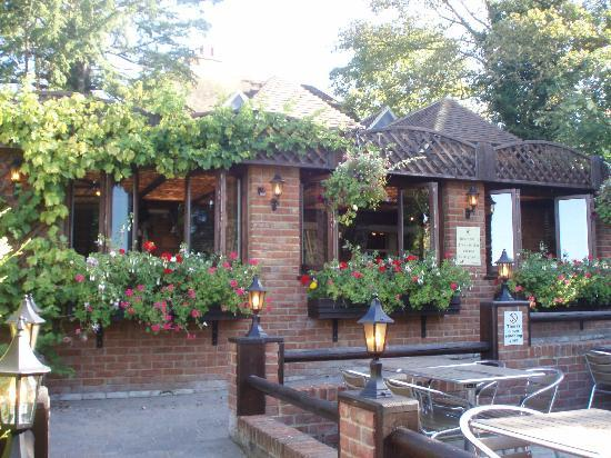 The Black Horse Inn: Rear conservatory inc grape vines