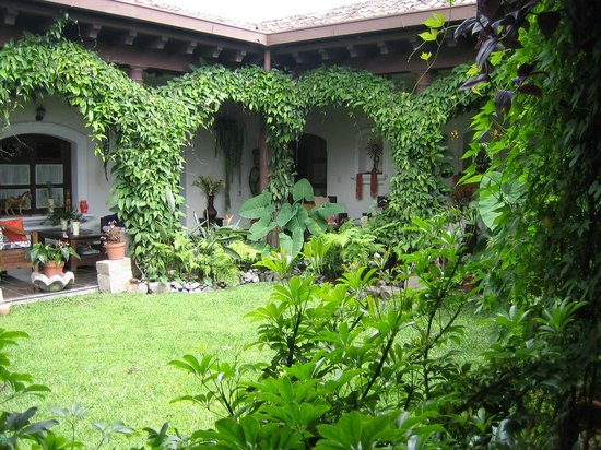 Hotel la Catedral: Interior Garden