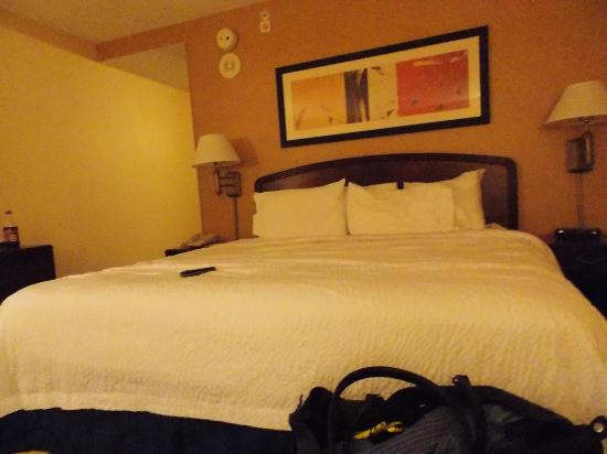 Courtyard by Marriott Chattanooga Downtown: Room