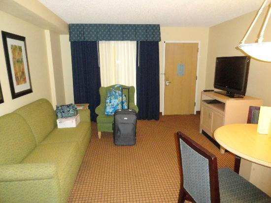 Embassy Suites Orlando/Lake Buena Vista Resort: Living Room Area