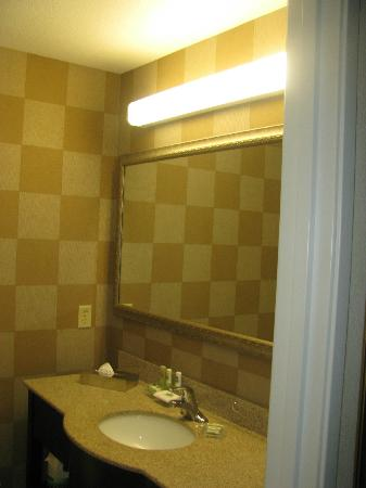 Country Inn & Suites Athens: Bathroom