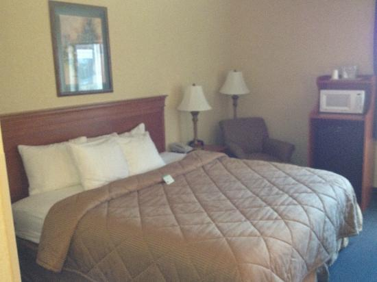 Bed picture of comfort inn pueblo pueblo tripadvisor for Comfort inn mattress brand