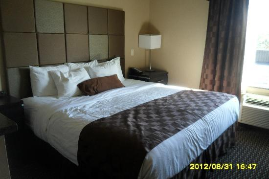 Comfort Suites Kelowna: Nice King Size Bed