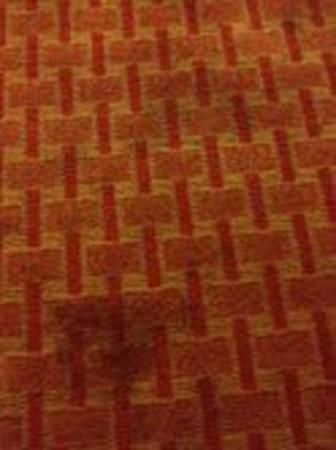 Comfort Inn Mayport: Stained carpets