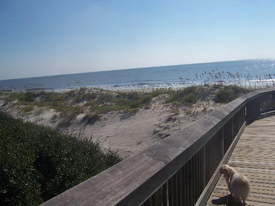 Hampton Inn & Suites Jekyll Island: Beach