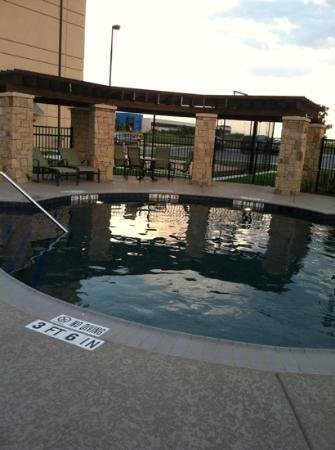 Homewood Suites by Hilton Austin / Round Rock: Beautiful Pool