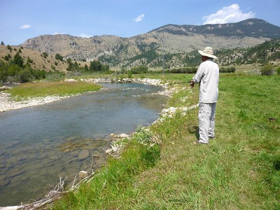 Trout Fishing On The Beautiful Ruby River Picture Of