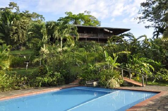 Finca Luna Nueva Lodge: View from the pool of our main lodge, Casa Luna, where we have four rooms with a wrap-around bal