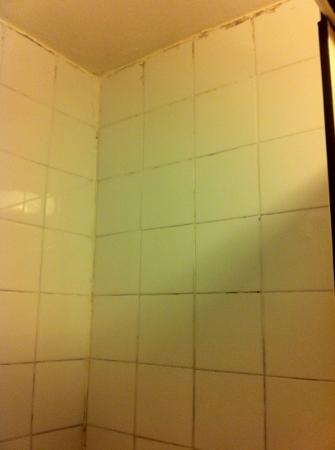 Charleville Lodge: tiles in shower