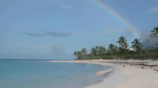 Pineapple Fields Resort: a rainbow on the pineapple field beach